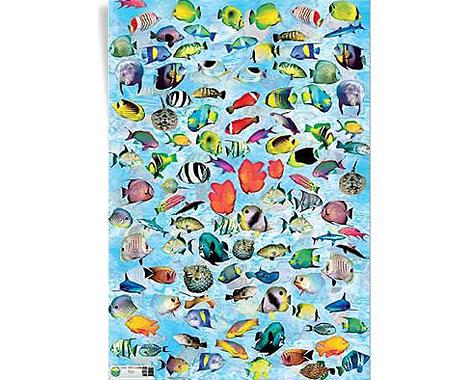 Papel decoupage peces papel hdcade116 1 97 www - Papel decoupage infantil ...